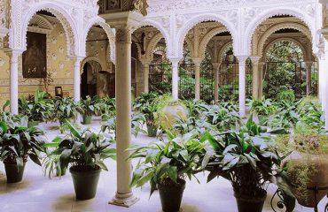 patio con pantas y columnas | Clínica de Medicina y Cirugía Estética Golden